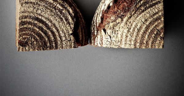 Brot & Backwaren